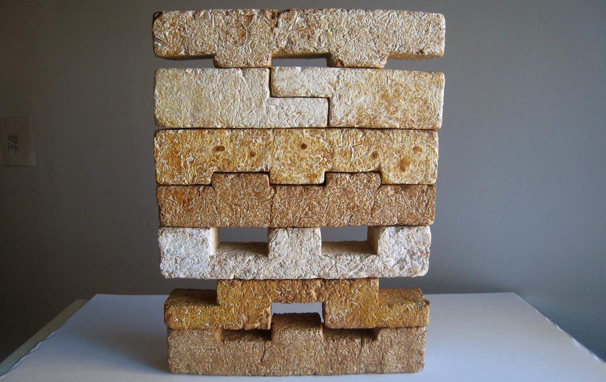 materiales-construccion-sustentables-hongos